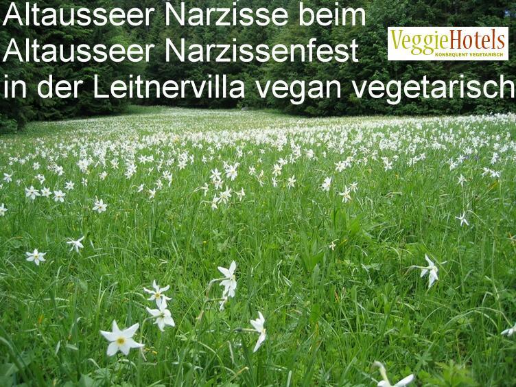 Leitnervilla vegan vegetarisch zum Altausseer Narzissenfest
