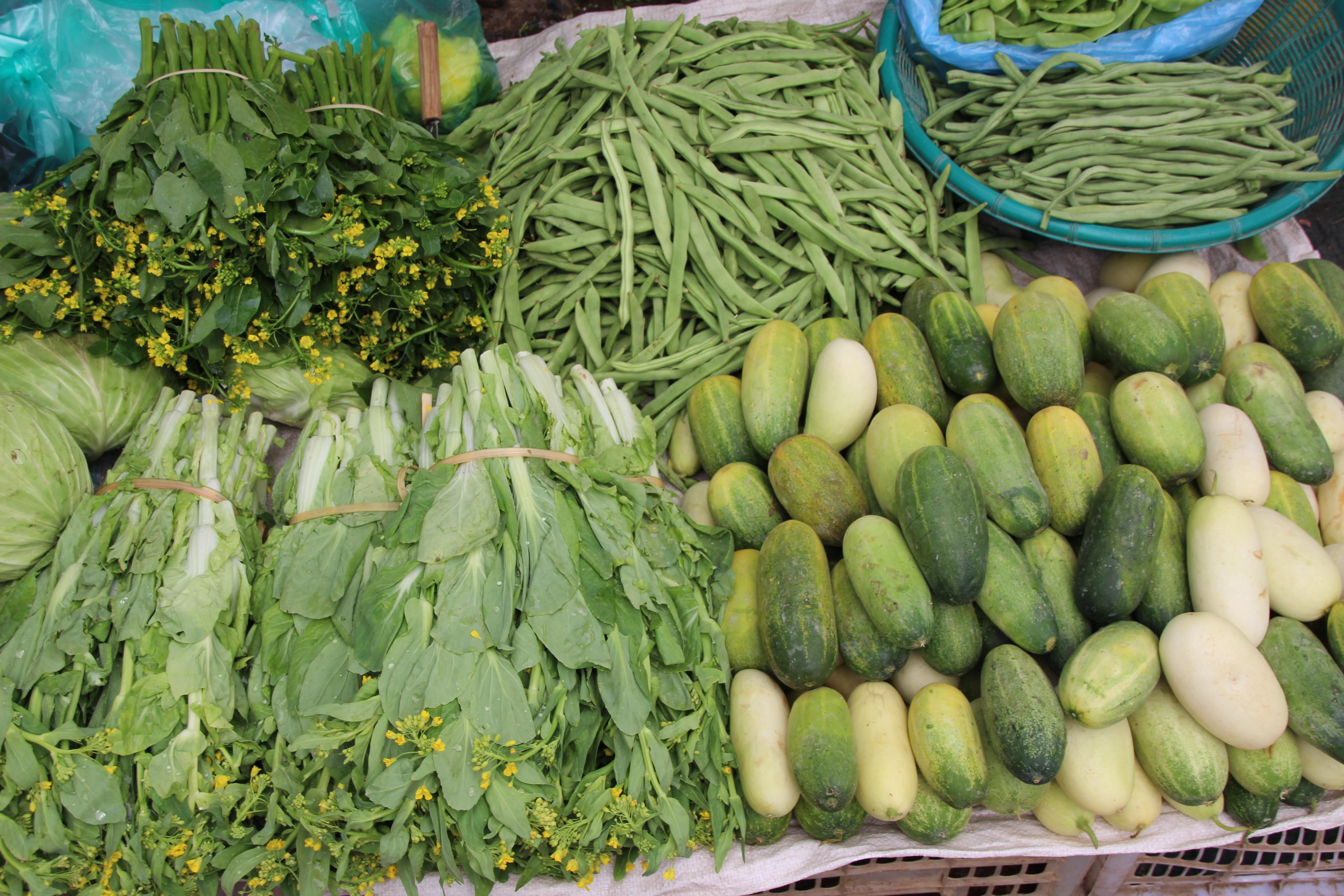 Immunkompetenz durch pflanzliche Nahrung